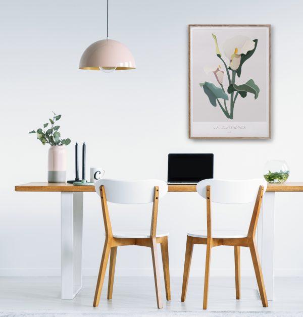 Botanisk plakat | Botanisk illustrasjon | Calla Lilje | Calla Aethopica | Plante | illustrert av Ohoi studio